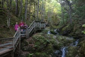 Fundy National Park 3