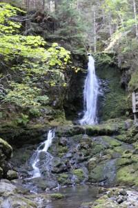Fundy National Park- Dickson Falls