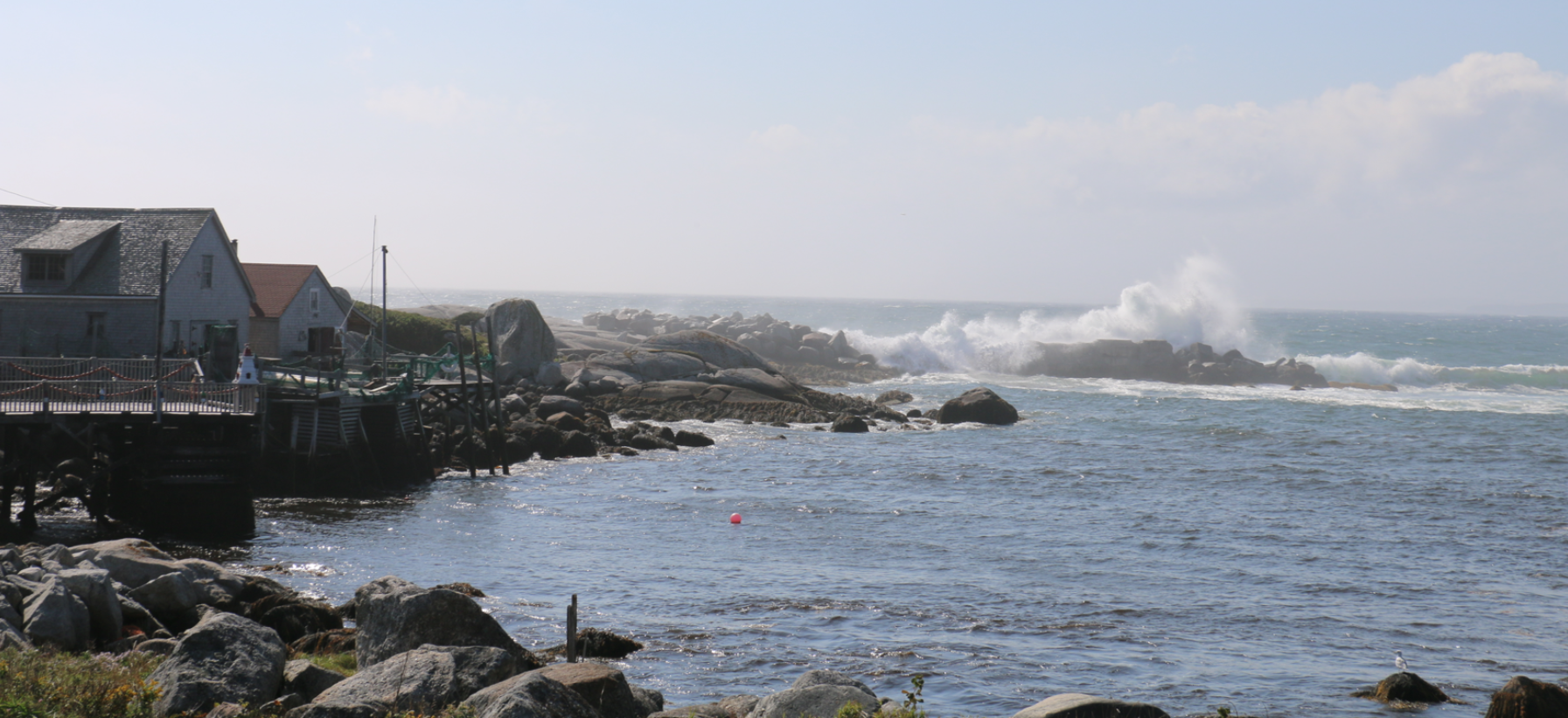 Trying To Fly – Peggy's Cove Nova Scotia