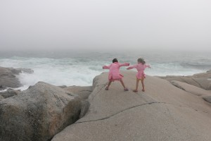 Trying to Fly- Peggy's Cove Nova Scotia