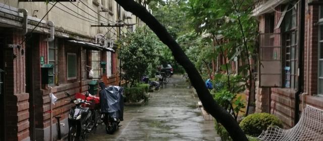 Day 10 – Walk around the neighbourhood